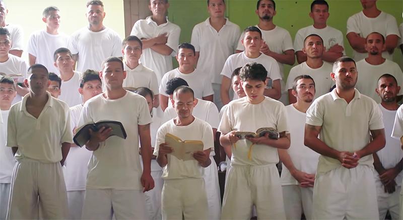 Revival in Mara Salvatrucha MS gang